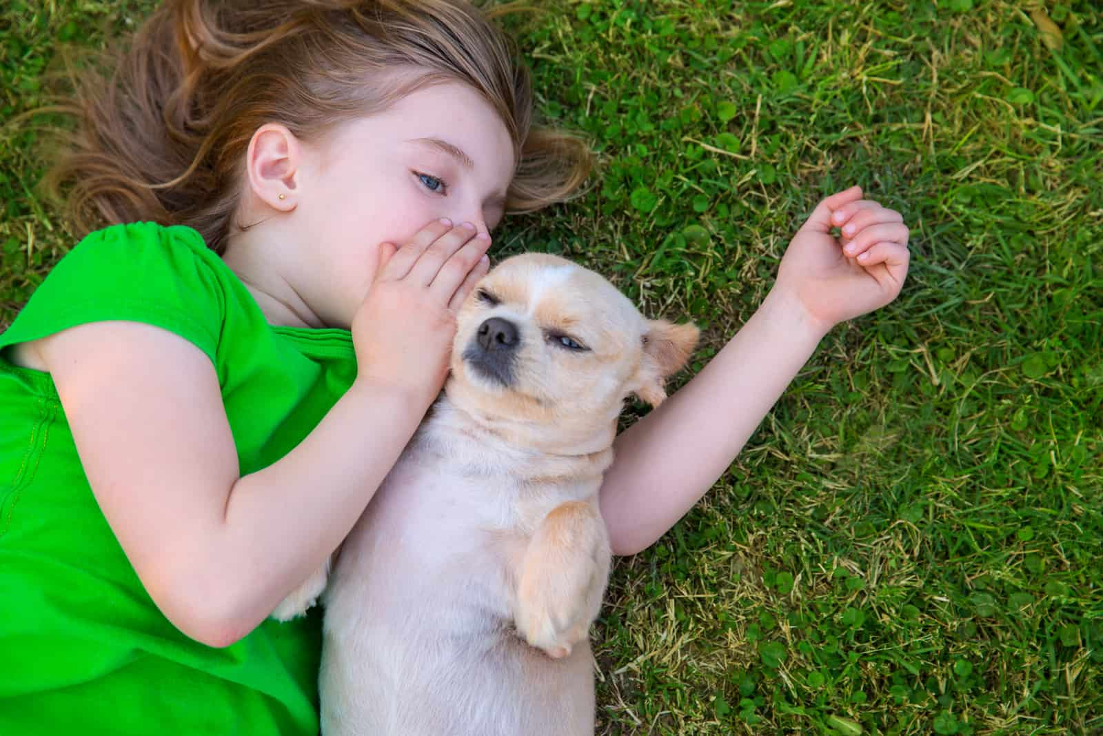 Is Your Dog An Empath?