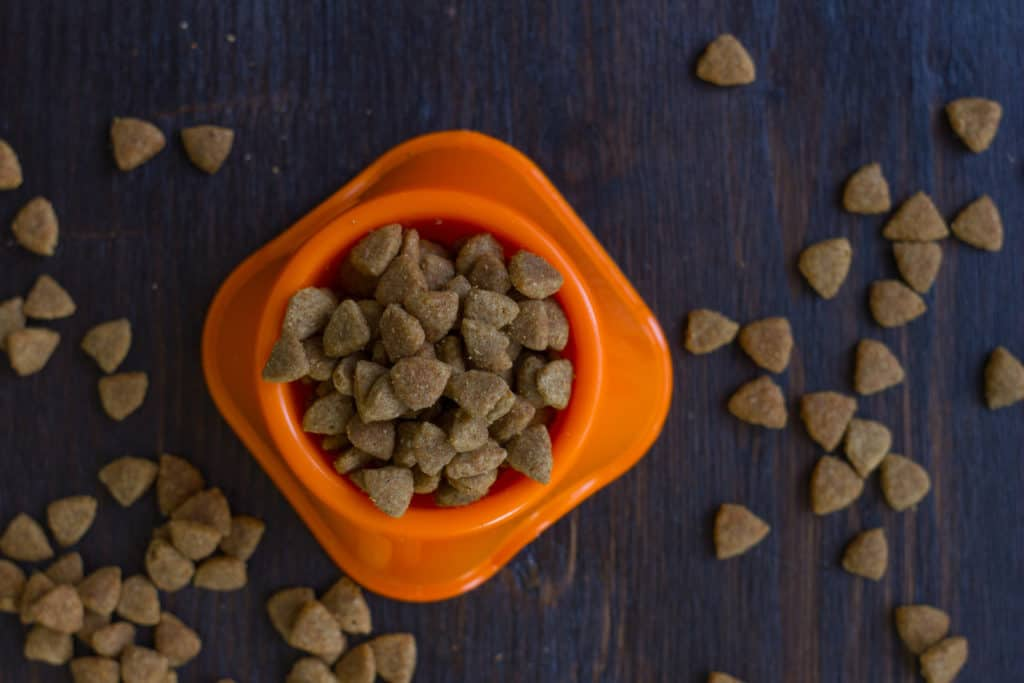 The Dangers Of Cheap Pet Food