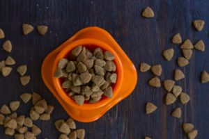 Top view of dry pet food in a bowl